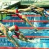 Спортсмены ставрополя успешно выступили на соревнованиях по плаванию