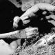 На Ставрополье найдено захоронение сарматского война...