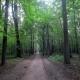 Для массового посещения природных заказников Ставрополья проложили три экотропы