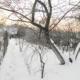 Администрация Ставрополя решила навести порядок в городе
