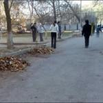 Ставрополь очистили от мусора собственными руками жители города