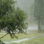погода летом в ставрополе