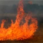 Разгорелся пожар на горе Бештау