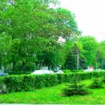 Зеленокумск Ставропольский край